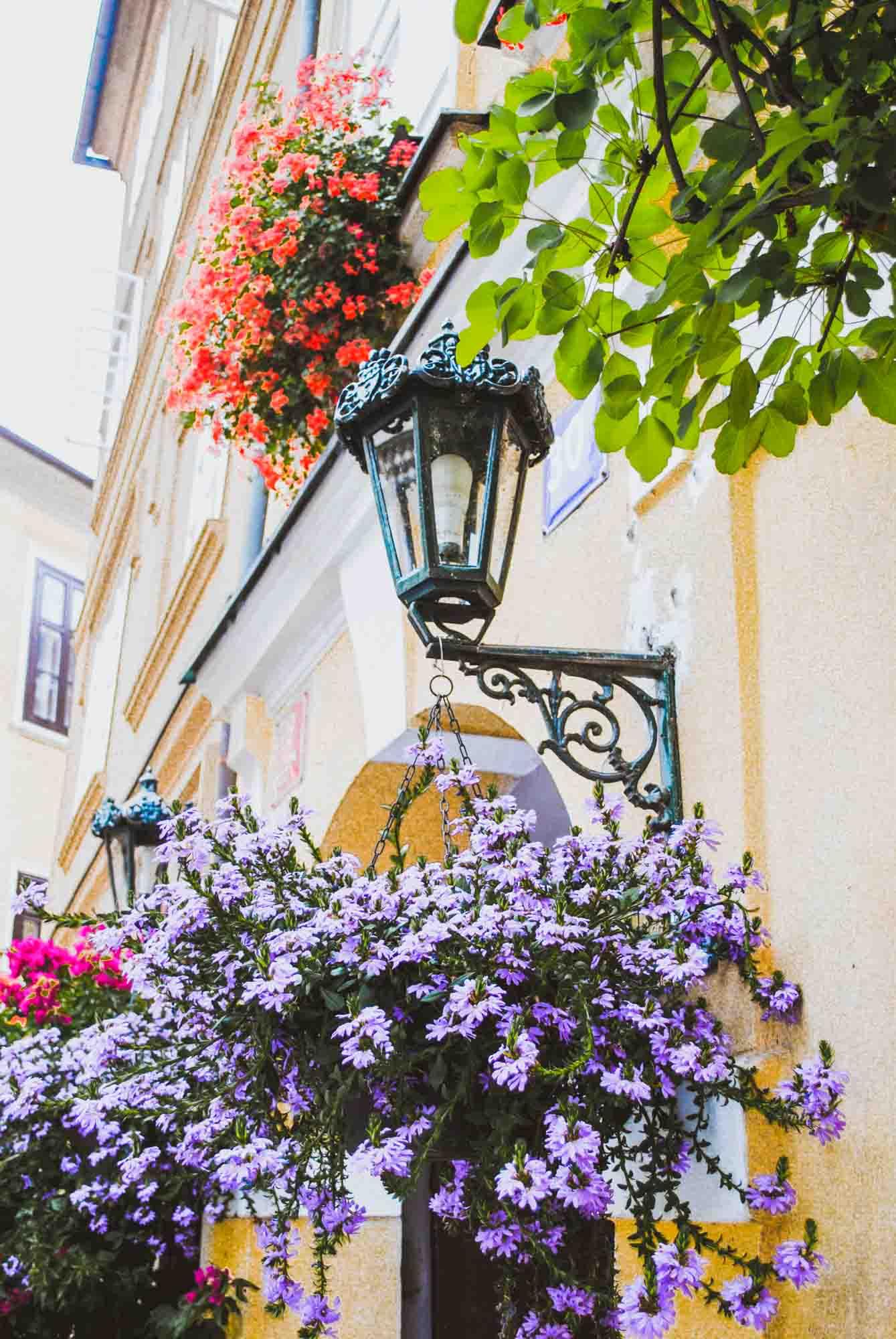 Prague Walking Tour -2