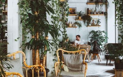 9 Best Coffee Shops and Coworking Cafes in Istanbul